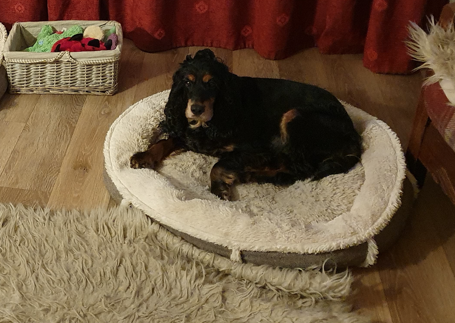 Eira Cocker in her bed